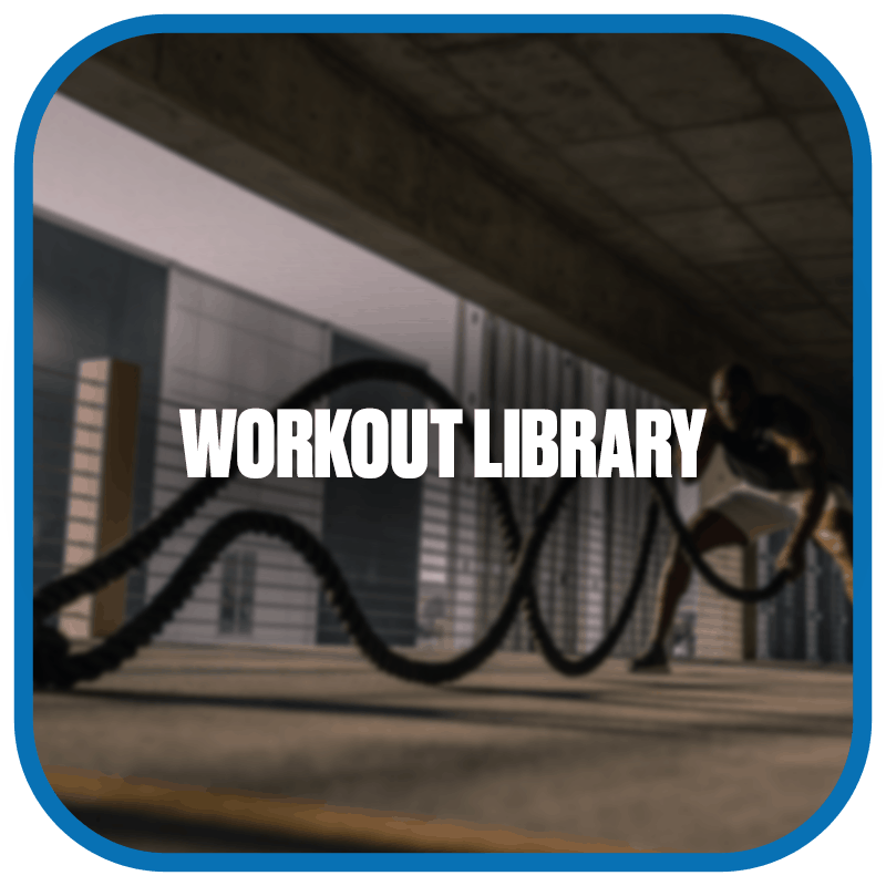 workout library (1)